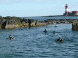 Divers in front of the Longstone lighthouse